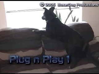 Plug N Play 1