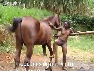 Carol Loves Sport And Horse fuck girl Sex